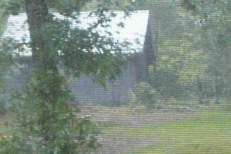 Foxwood window view