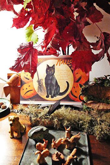 Cabin halloween 1