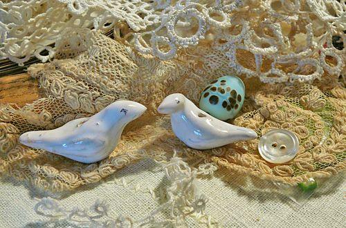 Julie's birds