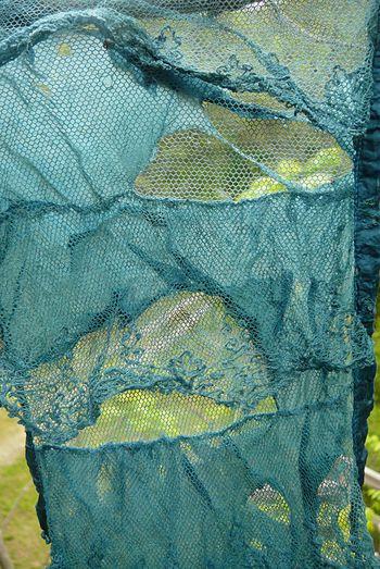 Indigo lace
