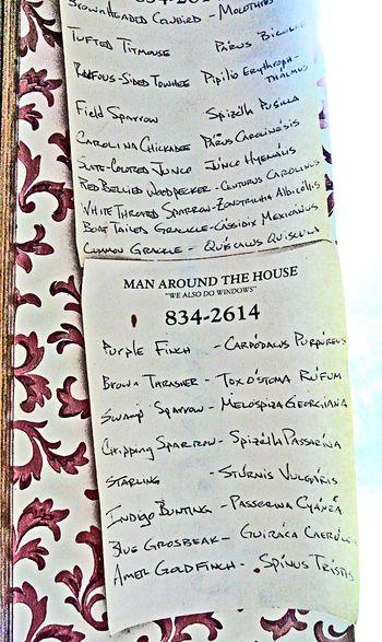 Ben's bird list