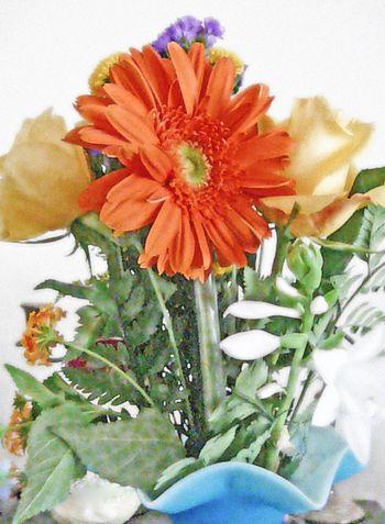 Ben's flowers