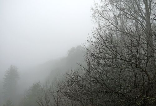 Patience in fog
