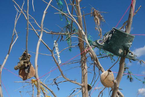 Beloved tree