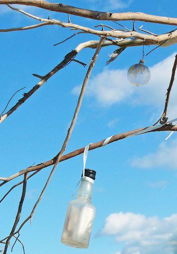 Bottle in the sun