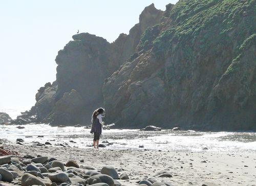 Lorrie combs the beach