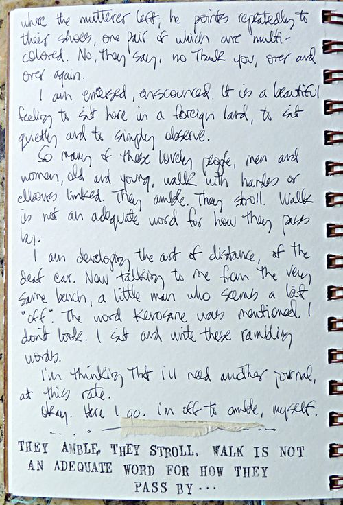 Journal page 6