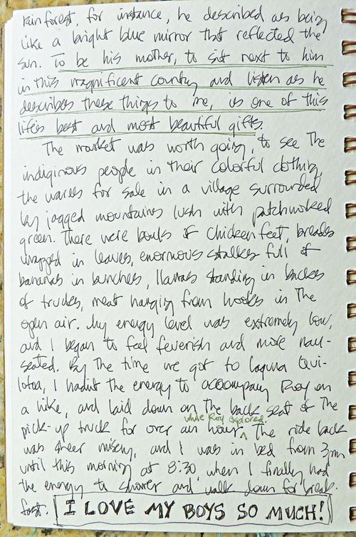 Journal page 12
