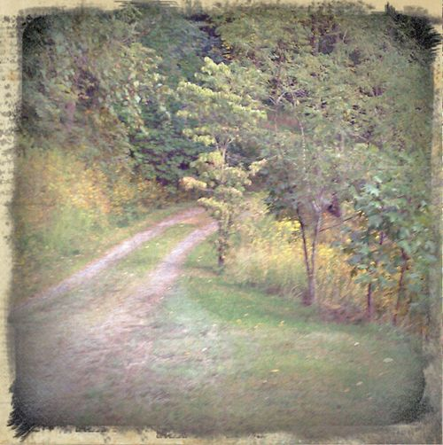 September driveway