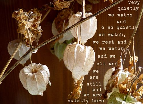 Quietly we watch