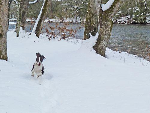 River snowboy