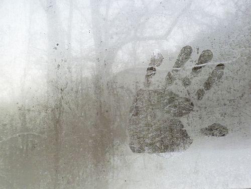 Snow surprise 1