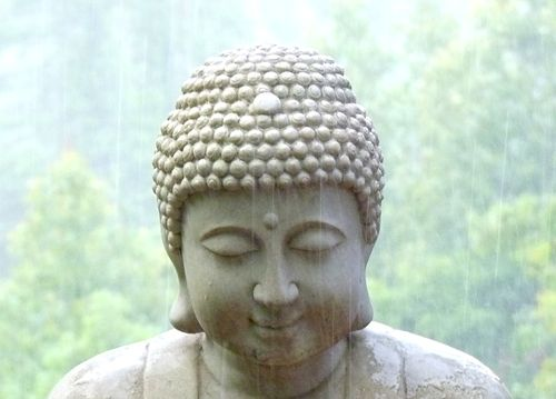 Buddha in the rain 1