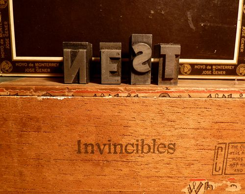 Studio nest invincibles