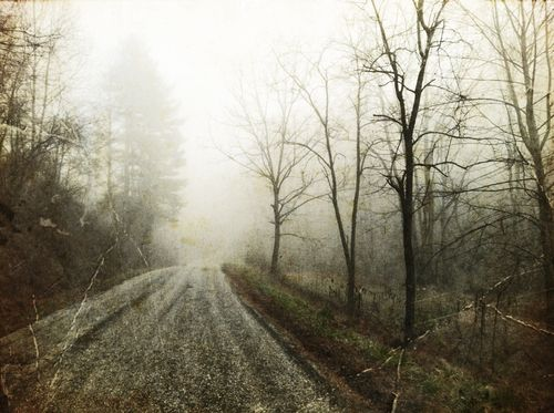 Firefly fog 2