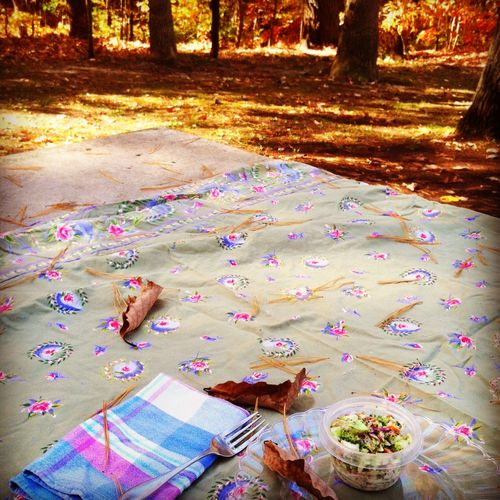 Picnic for one