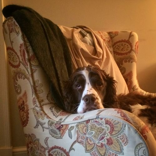 Walter in his grandmother's chair