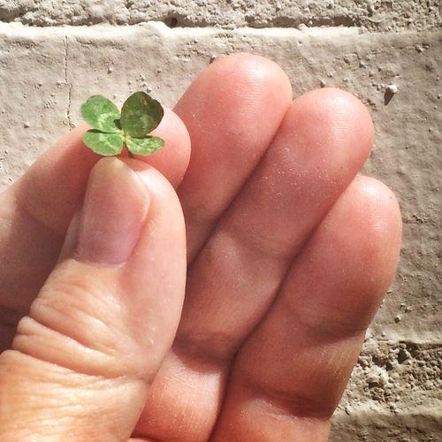 Tiny luck
