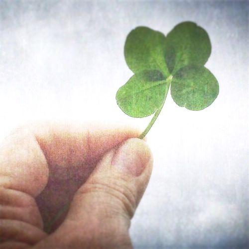 Sweet luck