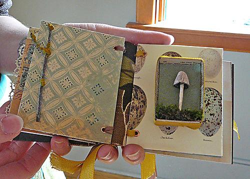 Cori's wee book with handmade mushroom
