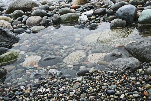 Last morning tide pool