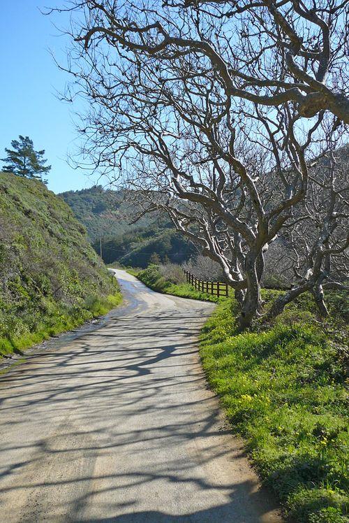 Road to pfeiffer beach