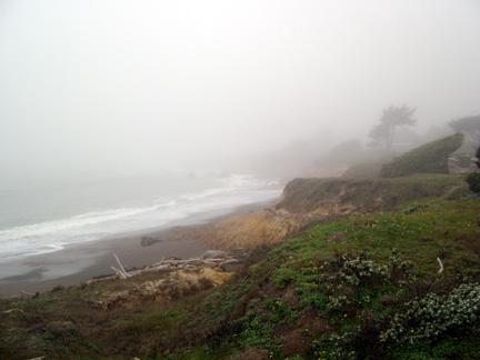 Foggy morning Moonstone Beach