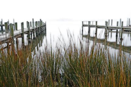 harbor docks in fog