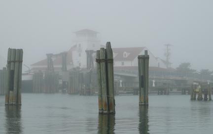 NCCAT in fog