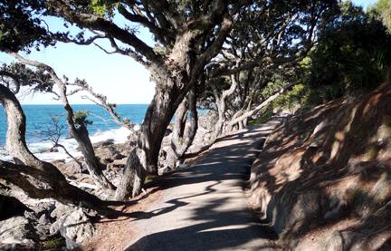 Mount_stroll