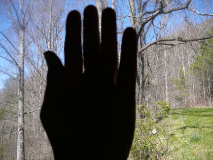 Hand_photo