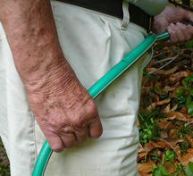 Watering_hands_smaller