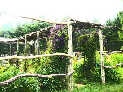 Garden_smaller