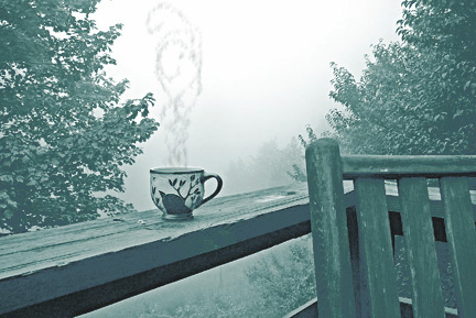 Quiet_morning_tea_for_ornamental_in