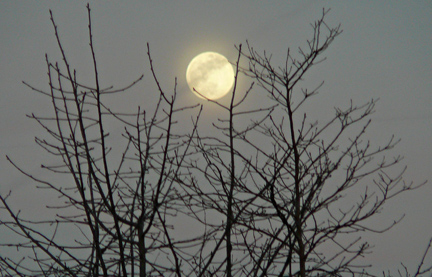 Asheville_full_moon