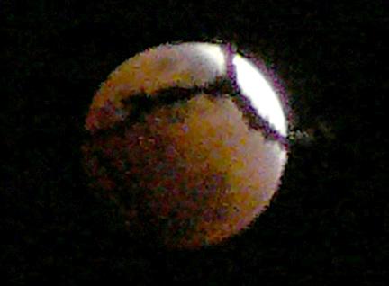 Eclipse_behind_a_branch