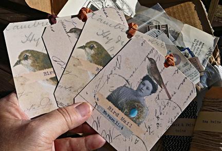 Bird_tags