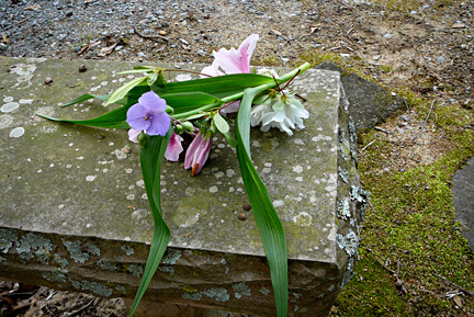 Flowers_on_grace_bench