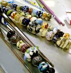 Eye_candy_for_ornamental