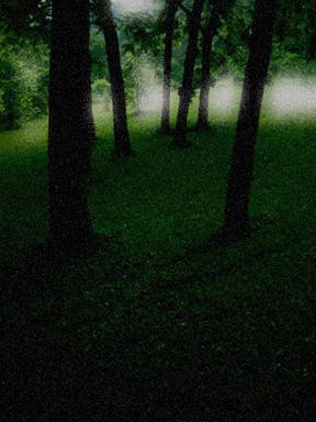 Midsummer_nights_eve