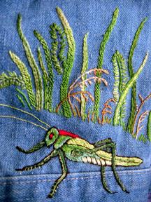 Mimis_garden_grasshopper