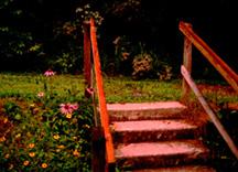 Twilight_steps_for_orn