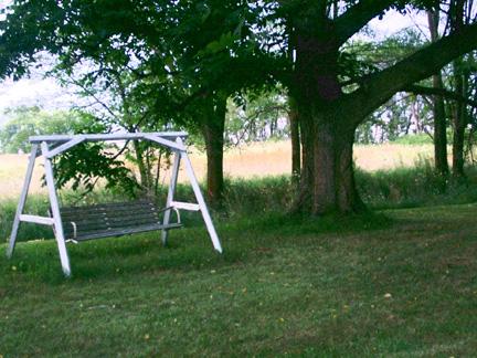 Yard swing